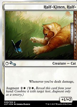 Half-Kitten