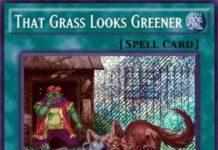 That Grass Looks Greener