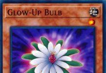 Glow-Up Bulb