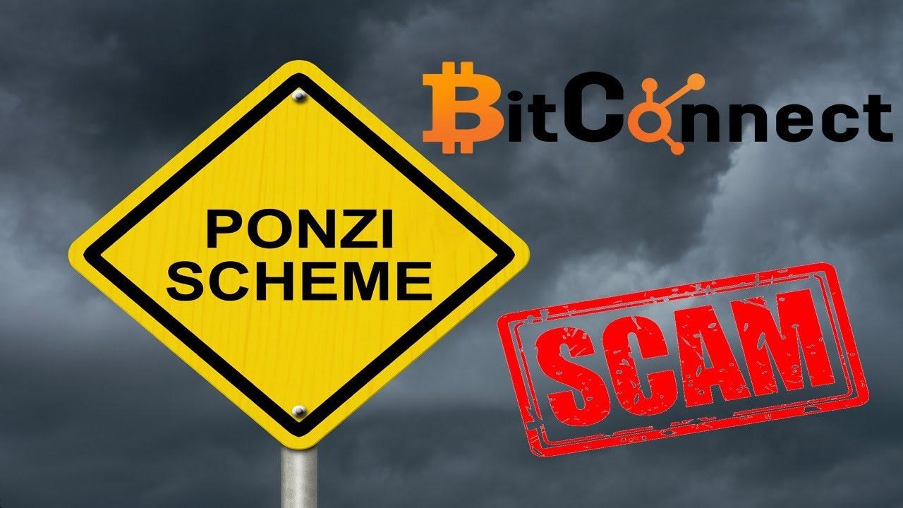 essay on ponzi scheme An analysis of fraud: causes, prevention, and notable cases kristin a kennedy bernie madoff ponzi scheme38.