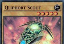 qliphort-scout