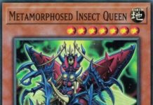 Metamorphosed Insect Queen