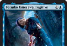 Tetsuko Umezawa, Fugitive