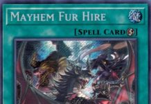 Mayhem Fur Hire