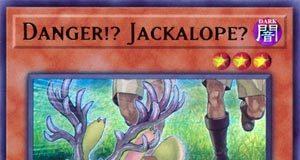 Danger!? Jackalope?