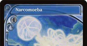 Narcomoeba