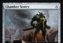 Chamber Sentry