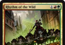 Rhythm of the Wild