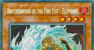 Brotherhood of the Fire Fist - Elephant