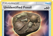 Unidentified Fossil