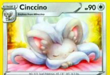 Cinccino