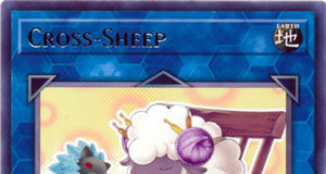 Cross-Sheep