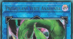 Predaplant Verte Anaconda