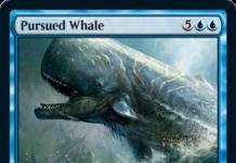 Pursued Whale