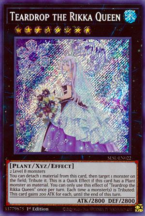 Teardrop the Rikka Queen