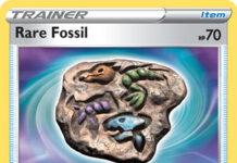 Rare Fossil