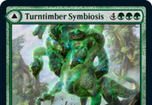 Turntimber Symbiosis