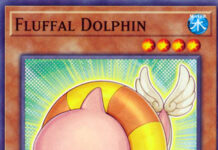 Fluffal Dolphin