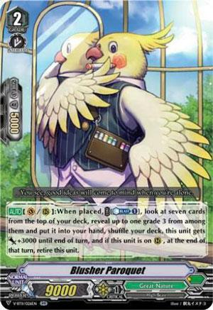 Blusher Parakeet