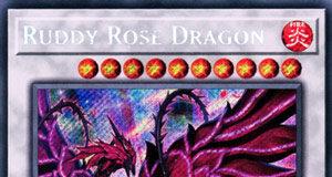 Ruddy Rose Dragon